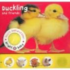 Touch, Feel & Listen-duckly And Friends